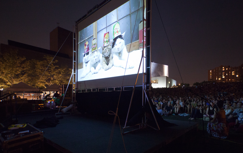 A crowd of 10,000 watched the first ever Internet Cat Video Festival at the Walker