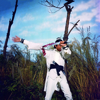 The New One-Armed Swordsman, 1971