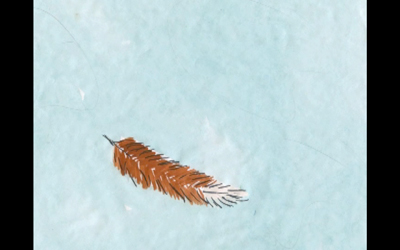 lovass_wings_2.jpg
