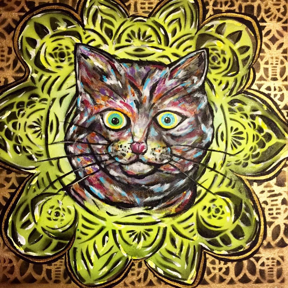 yuya cat2