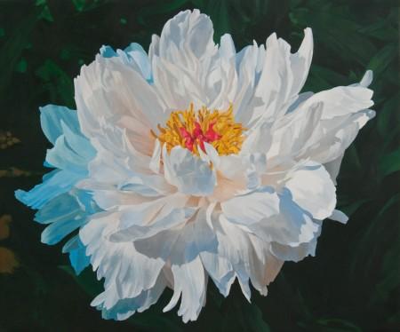 "Charles Lyon, Peony 1, 2010, oil on linen, 30 x 36"""