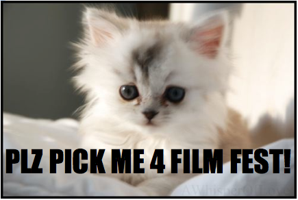 internet cat video film festival now accepting nominations videos for cats 435x292