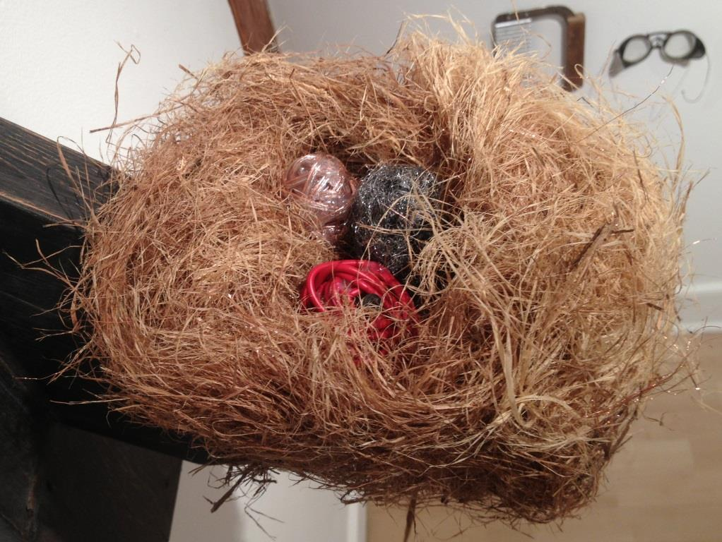 Garth Rockcastle, Hybrid Nest. Installation view, photo courtesy of the author.