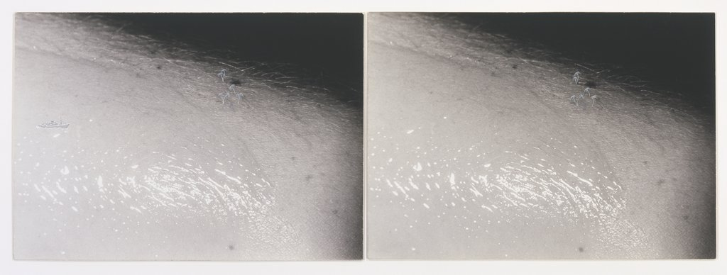 John Baldessari, Embed Series: Oiled Arm (Sinking Boat and Palms). Two black-and-white photographs mounted on paper board, 1974. Courtesy of the Walker Art Center.