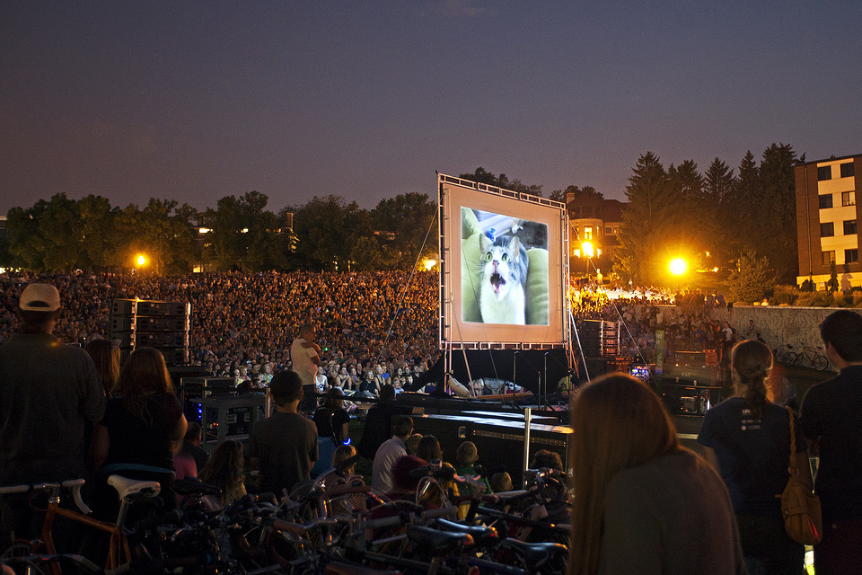 The world's first #CatVidFest at the Walker Art Center drew more than 10,000 people in 2012.