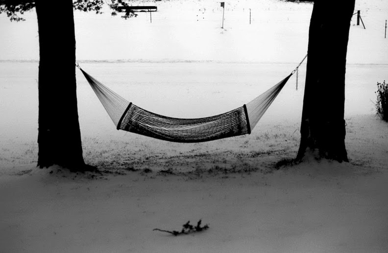 Jeffrey Skemp, Winter's Hammock: Johns Coulee, WI, 2014.
