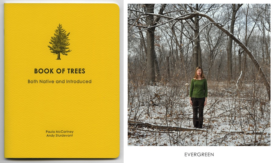 bot_cover and evergreen copy