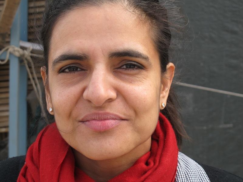 Bharti Kher, Delhi, 2012.