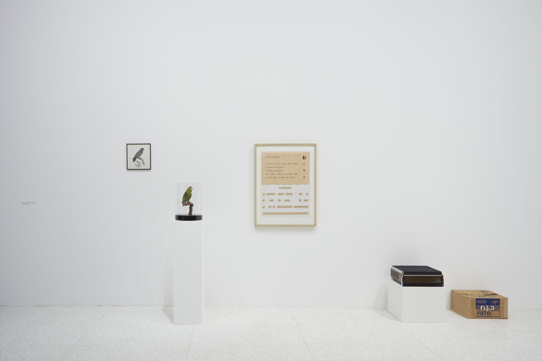 interiors and identity fionn meade on question the wall itself installation view of marcel broodthaers s dites partout que je l ai dit say everywhere i said so 1974 in question the wall itself photo gene pittman
